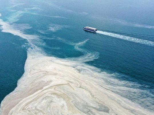 Çevre ve Şehircilik Bakanlığı, Marmara'daki deniz salyası sorunuyla ilgili 4 Haziran'da çalıştay düzenleyecek.